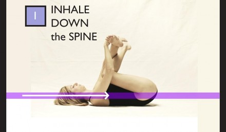 inhale down the spine