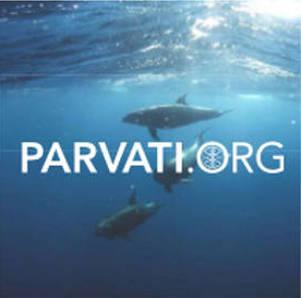 Arctic ocean-Parvati.org