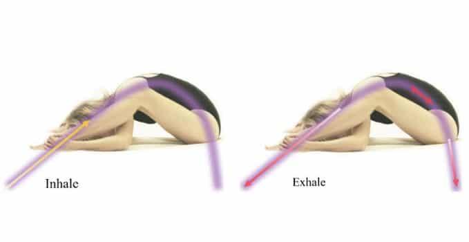 YEM-Yoga as Energy Medicine-Kurmasana - tortoise pose