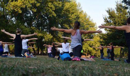 Yogis Unite - St. Petes Yoga Festival