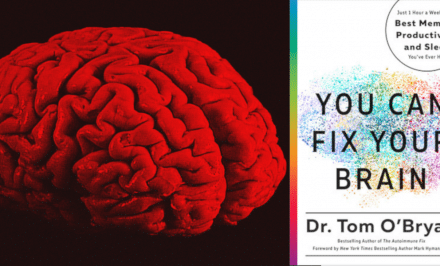 inflammation and the brain, you can fix your brain, pollution, brain degeneration