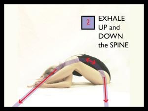 Parvati YEM Yoga as Energy Medicine Crab