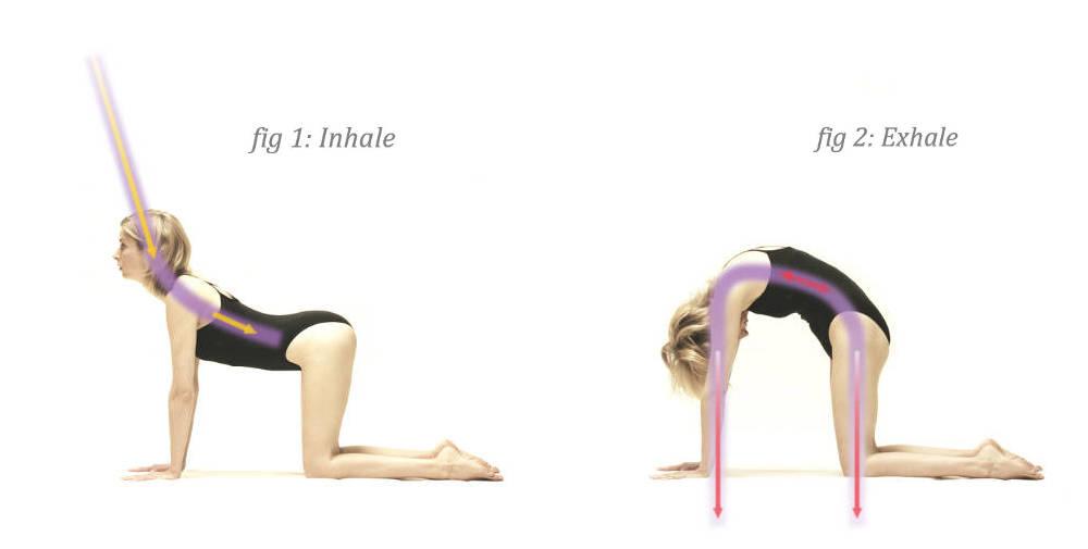 f1eb206dd7a7ab Yoga Archives - Page 5 of 13 - Parvati Magazine