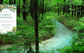 Book Review-Dr. Qing Li Forest Bathing