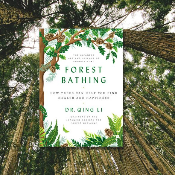 Forest Bathing review, Dr. Qing Li