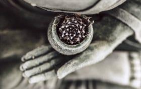 mindfulness-and health-book-dr.-dan-siegel-holistic-medicine