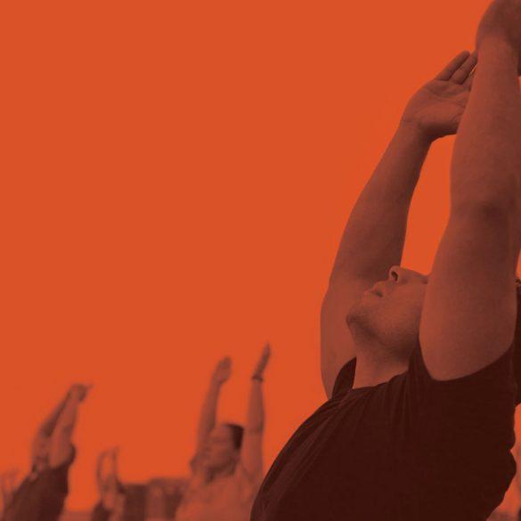 Yogis Unite MAPS, karma yoga