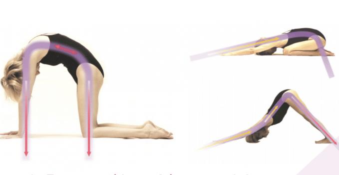 yoga flow, cat pose, extended child, asana flow, simple yoga flow