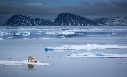 Antarctic, maps