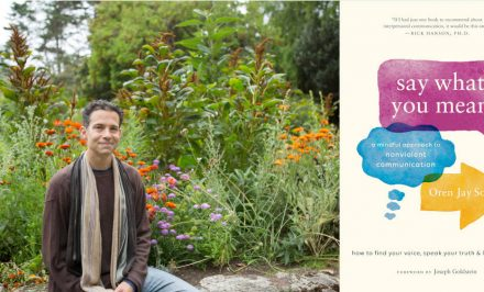 mindfulness, nonviolent communication