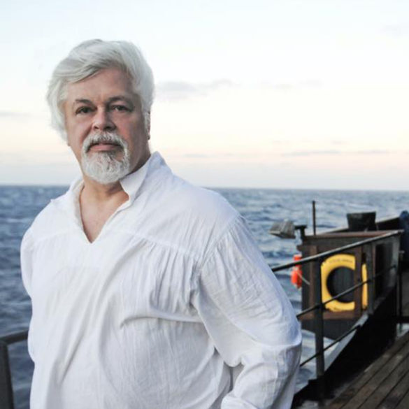 Parvati Magazine, MAPS, Marine Arctic Peace Sanctuary, Sea Shepherd, Captain Paul Watson