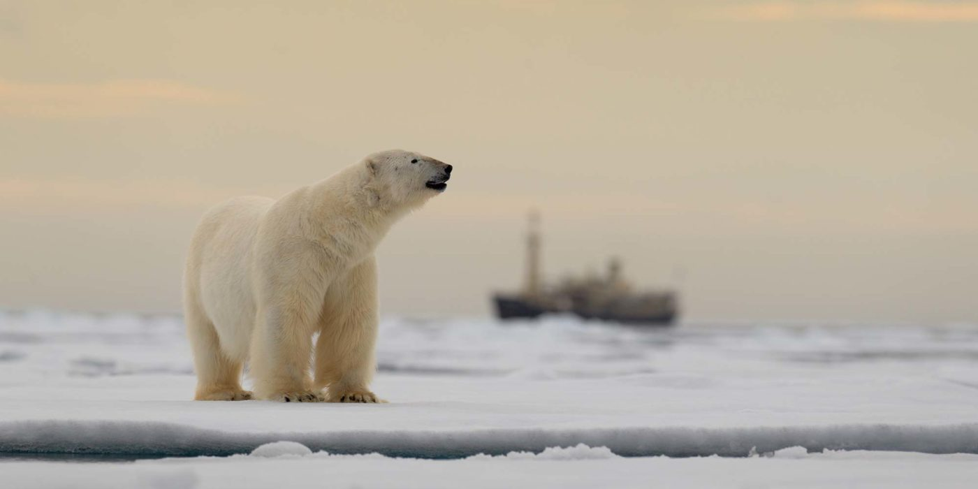 Parvati Magazine, MAPS, Marine Arctic Peace Sanctuary, Law of the Sea,MAPS News